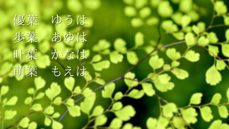 葉を使った名前(小さいたくさんの葉・今どきの名前・優葉)