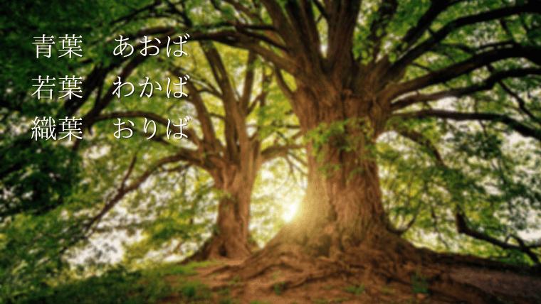 葉を使った名前(ば・ツリー・青葉)