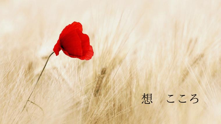omoukokoro akaihana