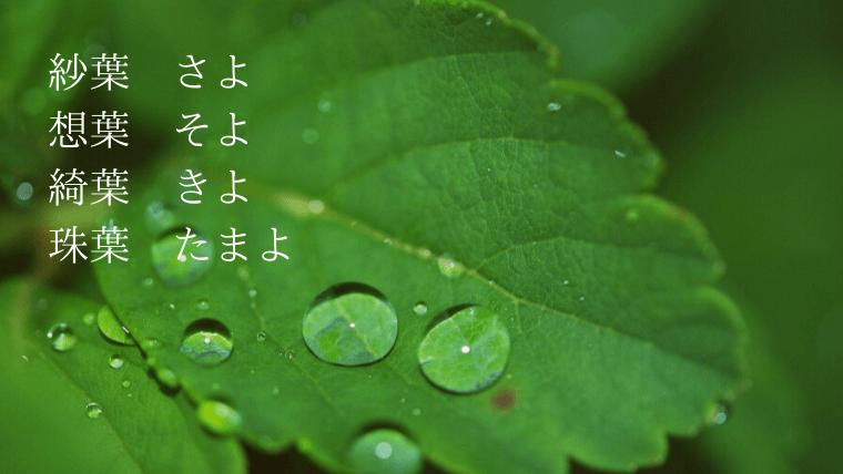 葉を使った名前(よ・水滴・紗葉)