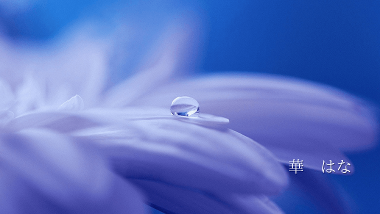 blue flower woter hana
