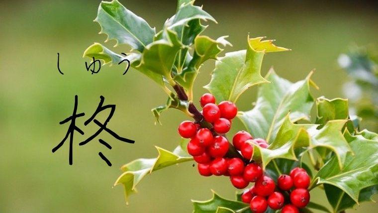 漢字 名前 植物 の